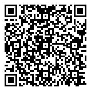 qr-code TEST